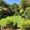 Bedford Park Open Gardens